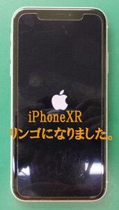 iPhoneXRリンゴマーク