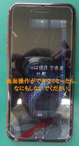 DSCFo4016.jpg